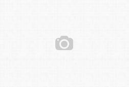 Inžinierius